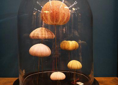 Objets de décoration - Globes et objets sur socle - AN ATOLL