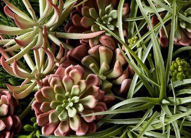 Décorations florales - décoration florale CACTUS - LOU DE CASTELLANE
