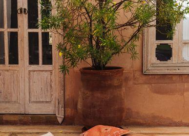 Cushions - Cactus Silk Cushion - CHABI CHIC