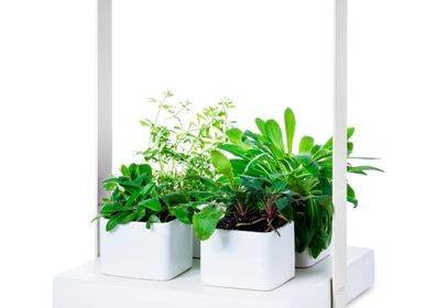 Spa and wellness - QUATTRO _ The first smart garden for your well-being - KIGARDEN