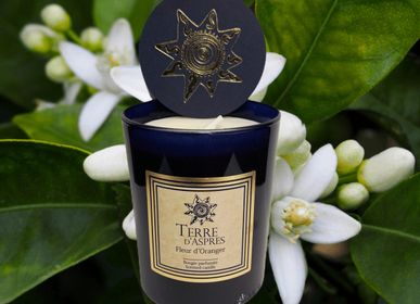 Candles - Orange Blossom Candle - TERRE D'ASPRES BY TERRE D'ORIA