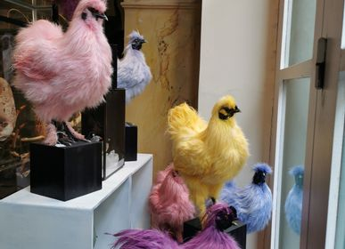 Decorative objects - Colourful hens - DESIGN & NATURE
