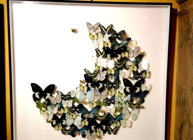 Objets de décoration - Cadre à papillons en forme de lune  - DESIGN & NATURE