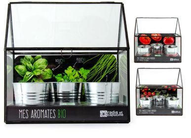 Gifts - Zinc chassis collection with seeds to grow - RADIS ET CAPUCINE