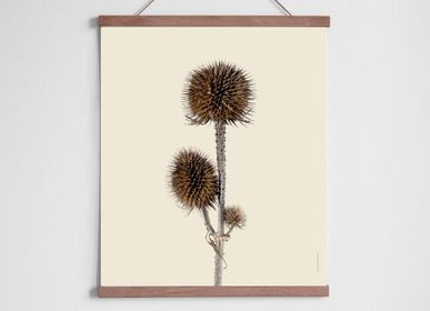 Poster - Withered botanicals - LILJEBERGS