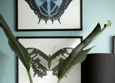 Wall decoration - Framed art: Beautiful Butterfly - G & C INTERIORS A/S