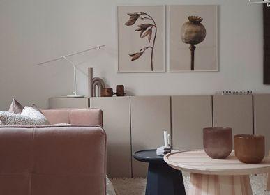 Affiches - Impressions botaniques - LILJEBERGS