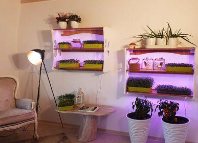 Shelves - Blossom set - GILĖ SPROUT