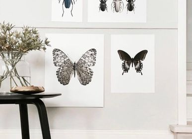 Poster - Art prints of nature - LILJEBERGS