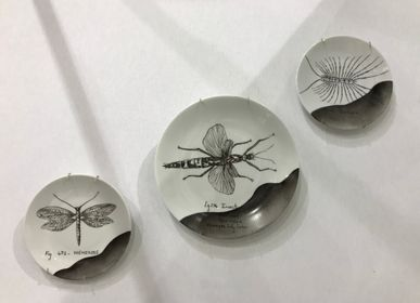 Decorative objects - Wall installation of illustrated plates INSECTS - VERONIQUE JOLY-CORBIN