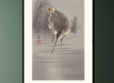 Poster - Japanese print birds Solitary Snipe from Ohara Koson ready to be framed 30x40 cm - BILLPOSTERS