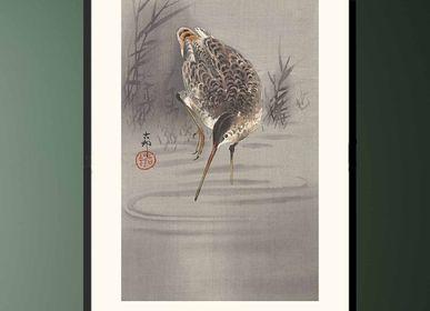 Affiches - Estampe japonaise oiseaux Bécassine solitaire de Ohara Koson prêt-à-encadrer 30x40 cm - BILLPOSTERS