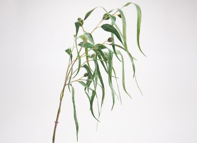 Floral decoration - Eucalyptus curly - LOU DE CASTELLANE - Artificial flowers more true than nature  - LOU DE CASTELLANE
