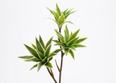 Décorations florales - Branche mini dracaena - LOU DE CASTELLANE - Fleurs artificielles plus vraies que nature  - LOU DE CASTELLANE