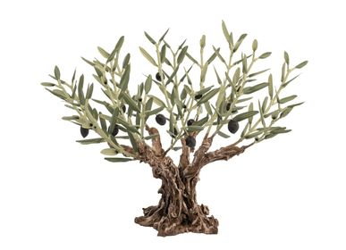 Unique pieces - 16 twigs olive tree - L'OLIVIER FORGÉ