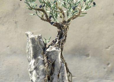 Objets de décoration -  Bonsaï d'Olivier 33 rameaux sur rocher - L'OLIVIER FORGÉ