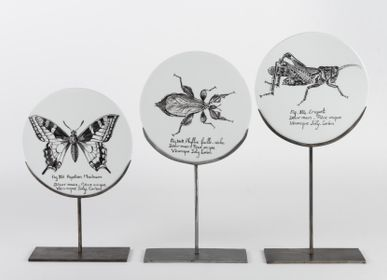 Unique pieces - Insect Curiosity Disk - VERONIQUE JOLY-CORBIN