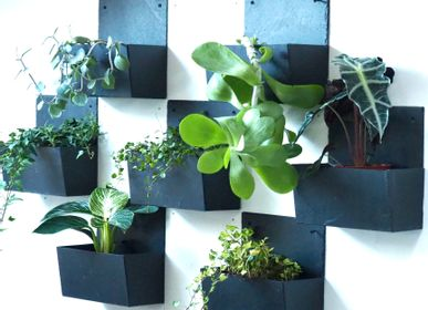 Kitchen splash backs - Wall slate planter PM - LE TRÈFLE BLEU
