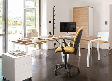 Desks - XERUS Executive Office - GAUTIER OFFICE