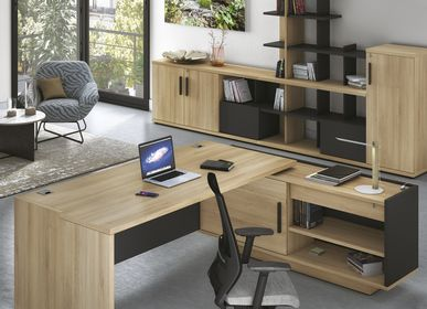 Office furniture and storage - Executive Office BRABANT - GAUTIER OFFICE