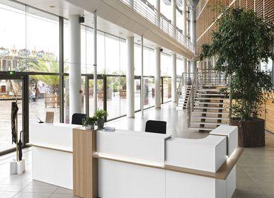 Countertops - ZOOM bank reception - GAUTIER OFFICE