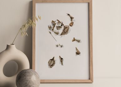 "Art photos - ""Bonsai"" / Wall art / Giclée print - DOEN STUDIO"