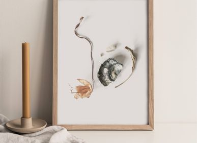 "Art photos - ""Oyster & leaves"" / Wall art / Giclée print - DOEN STUDIO"