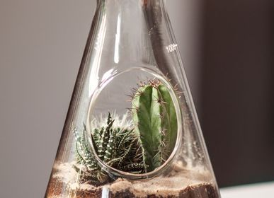Decorative objects - Chemistry terrarium kit - SUCK UK