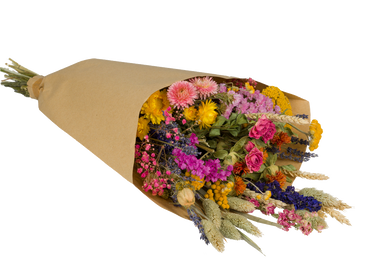 Gifts - Multicolor Field Bouquet Small/Medium/Large - PLANTOPHILE