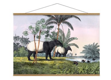 Poster - Poster. Malay Tapir. - THE DYBDAHL CO.