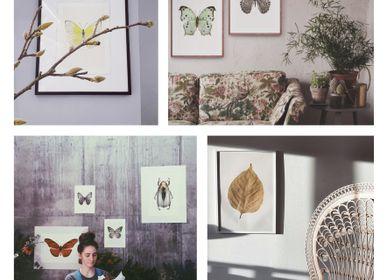 Other wall decoration - Framed art prints - LILJEBERGS