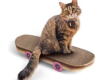 Decorative objects - Cat scratcher skateboard - SUCK UK