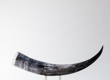 Objets design - Petite Sculpture | Corne naturelle - ZANCHI 1952