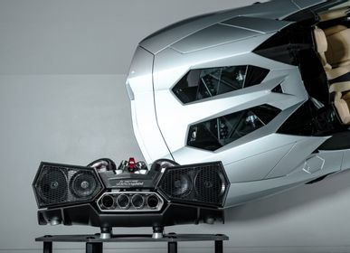 Speakers and radios - ESAVOX Automobili Lamborghini - IXOOST - ARTISTIC AUDIO