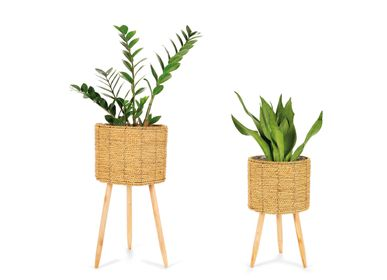 Flower pots - SET 2 CATTAIL GRASS PLANTERS Ø30X58 AX21542 - ANDREA HOUSE