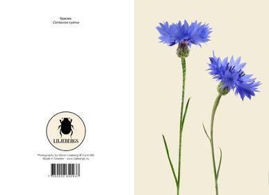 Stationery - Greeting cards - LILJEBERGS