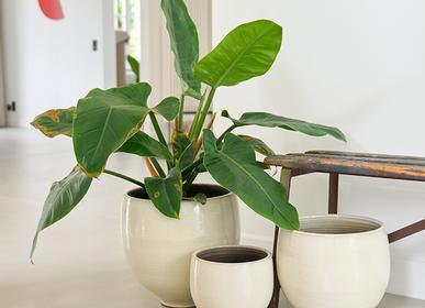 Ceramic - TAN indoor ceramic pot  - D&M DECO