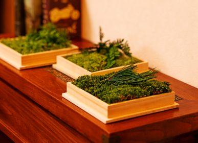 Decorative objects - Kibako - FUJIGOKE