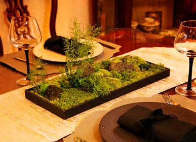 Objets design - Jardin de mousse (G-1) - FUJIGOKE