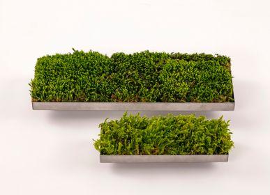 Design objects - Moss Linear (S) (L-2) - FUJIGOKE