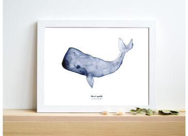 Affiches - Affichette A5 - Baleine - BLEU COQUILLE