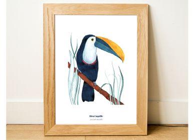 Poster - Poster 30x40 - Le Toucan Blue - BLEU COQUILLE