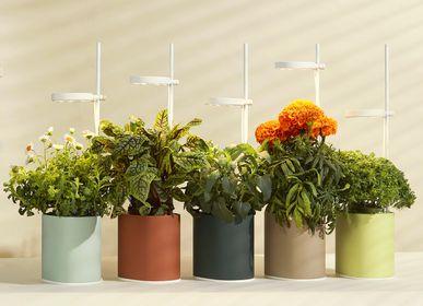 Gifts - Nano Garden - PRÊT À POUSSER