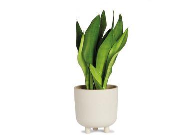 Flower pots - IVORY CERAMIC FLOWERPOT Ø18X18,5 CM AX71191 - ANDREA HOUSE