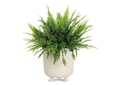 Pots de fleurs - Pot de fleurs en céramique ivoire Ø21,5x23 cm AX71192 - ANDREA HOUSE