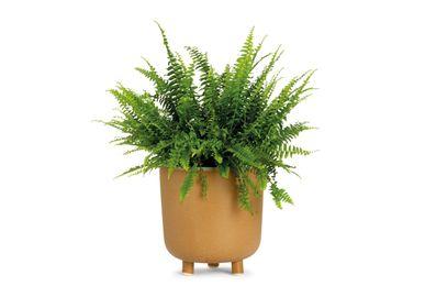 Flower pots - BEIGE CERAMIC FLOWERPOT Ø21.5X23 CM AX71194 - ANDREA HOUSE