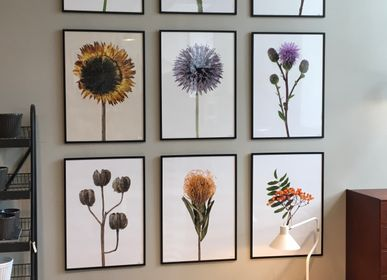 Art photos - Frames - LILJEBERGS