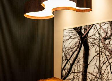 Hanging lights - Organic Collection  - ACCORD LIGHTING
