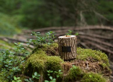 Gifts - ROCKY S | Unique candle made of wood, beeswax and natural oils | Perfect gifting size - WOOD MOOD