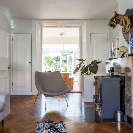 Tapis  - beautiful rugs - DMW.NU: TAXIDERMY & INTERIOR